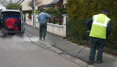 Weed Removal